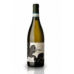 Laficaia Chardonnay DOCG  baltasis vynas, Italija