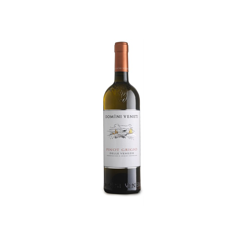Pinot Grigio delle Venezie DOC 2019, Veneto Italy